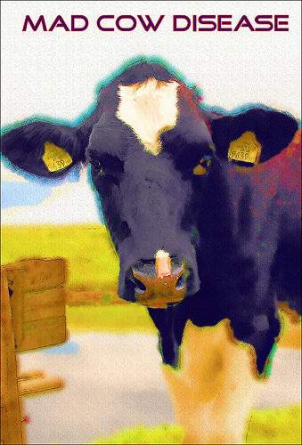 Mad Cow Disease Newly Confirmed in California
