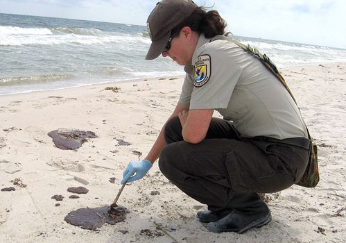 BP GULF OF MEXICO DISASTER: Environmental Contamination. Deadly Bacteria Found in Tar Balls
