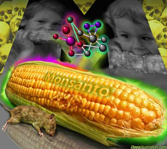 Russia bans all GM corn imports; EU may also ban Monsanto GMO in wake of shocking cancer findings