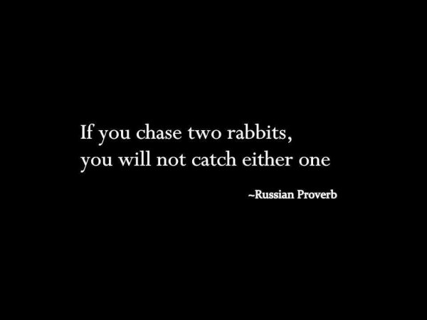 Chase two rabbits, catch none
