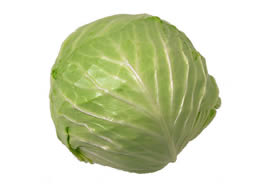 cabbage_-d1_small
