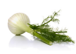 fennel_-d1_small