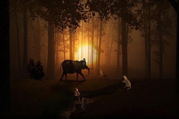 13-Interesting-Facts-about-Dreams-elephant