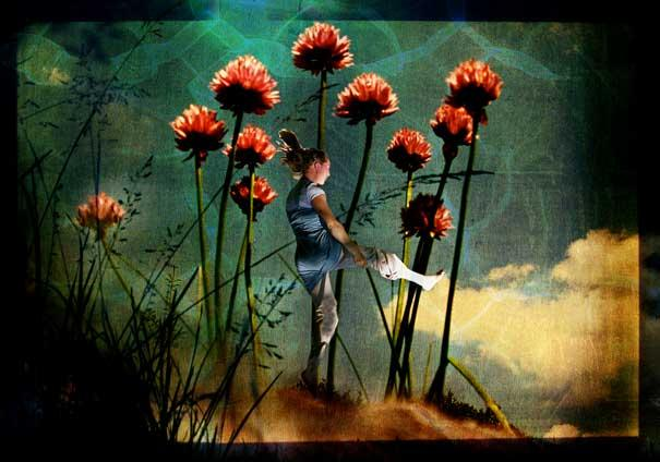 13-Interesting-Facts-about-Dreams-flowers