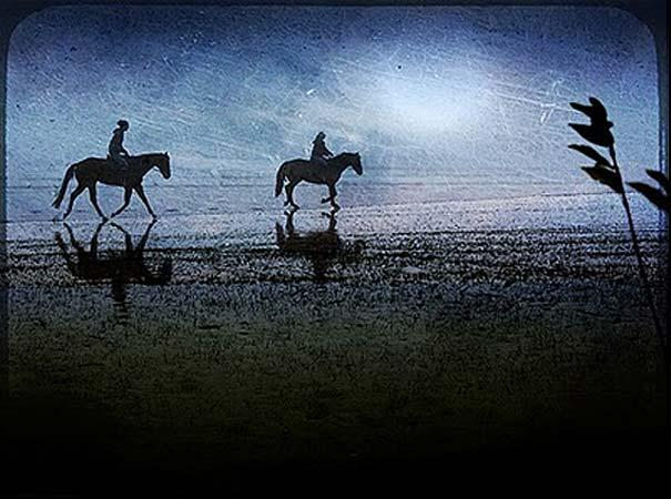 13-Interesting-Facts-about-Dreams-horses