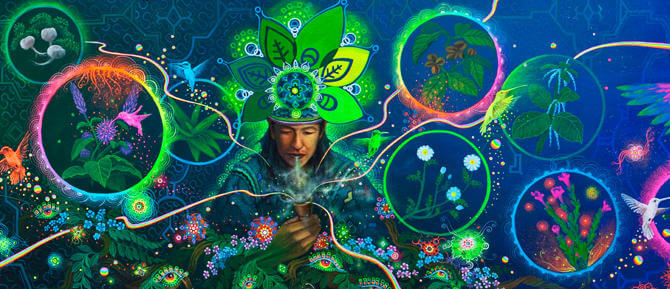 Legal-psychedelics-mystical-herbs