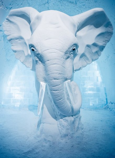 art-suite-elephant-betsy-icehotel-sweden-2016-561x768