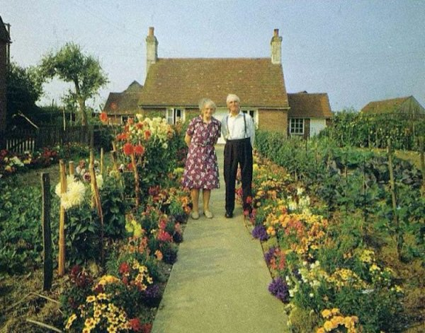 married life english country garden ken griffiths 4
