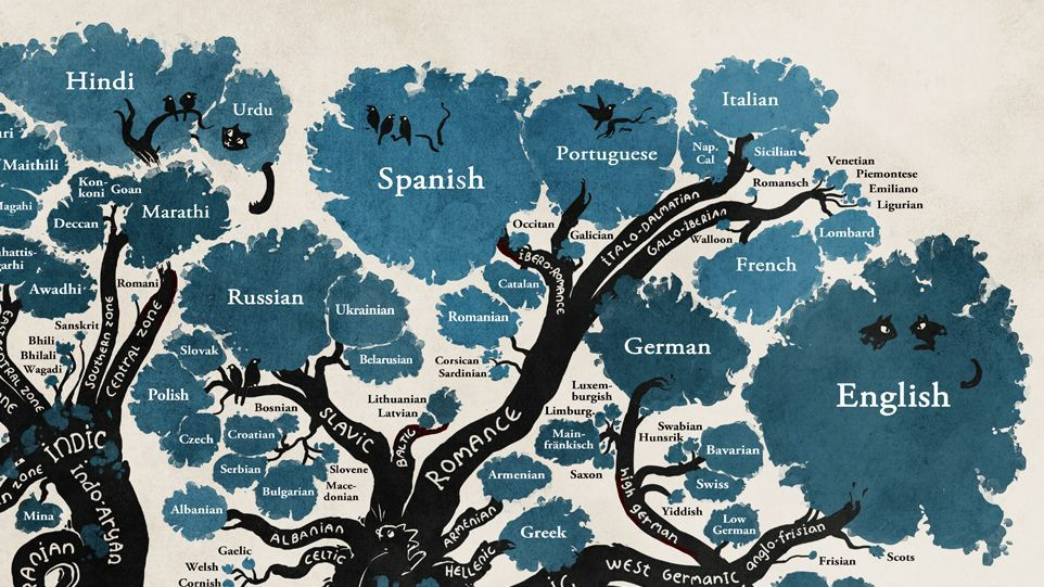 The Tree Of Languages Illustrated In One Gorgeous Infographic - Language families of the world