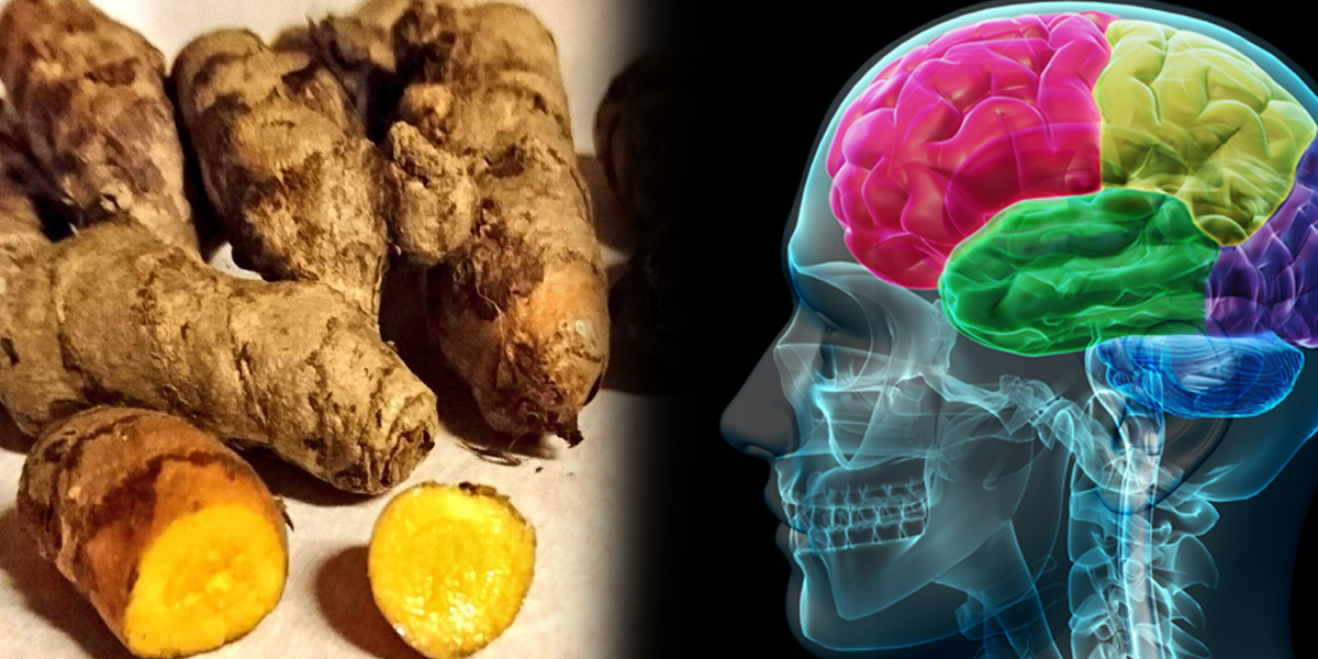 Turmeric Can Remove Fluoride From The Brain, Says Study Turmeric-brain-