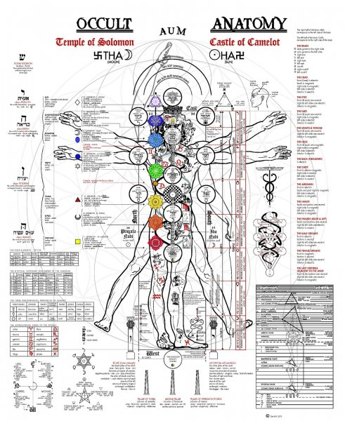 occult anatomy big 1