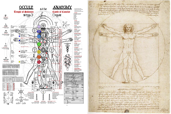 how to draw vitruvian man