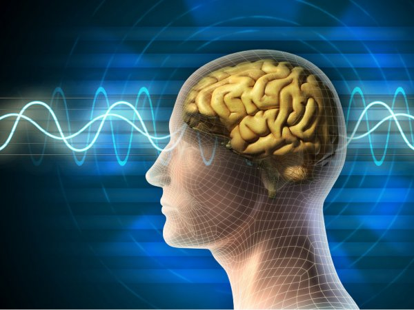 an analysis of the enchanting world of below consciousness feelings Below the surface lies the unconscious feelings, and memories from consciousness cattell used factor analysis to develop a 16 personality factor (16pf.