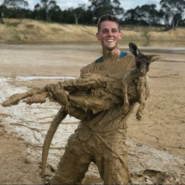 http 2F2Fprod.static9.net .au2F 2Fmedia2F20182F042F232F182F072FKangaroo stuck in the mud