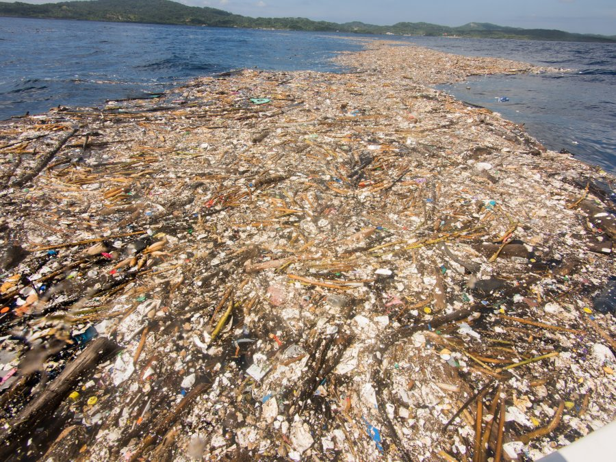'Sea Of Plastic' Discovered In The Caribbean Stretches Miles And Is Choking Wildlife 9300780-900x675