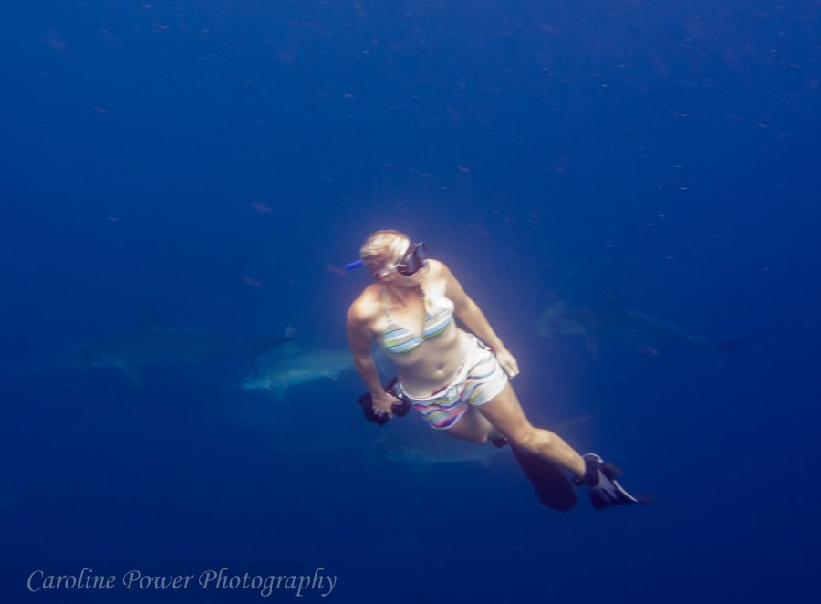 'Sea Of Plastic' Discovered In The Caribbean Stretches Miles And Is Choking Wildlife Copy-of-IMG_0754-900x662