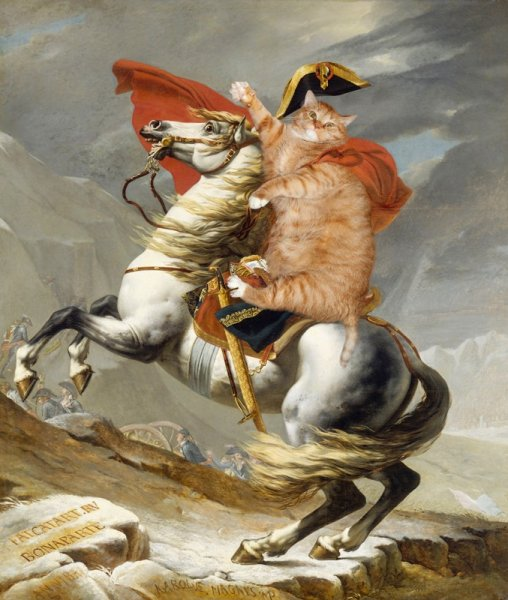 """cats21 """"Napoleon Crossing the Alps"""" by Jacques Louis David"""