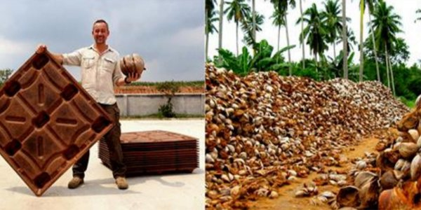 Fire Resistant Coconut Husks Can Replace Wood And Save Millions Of Trees