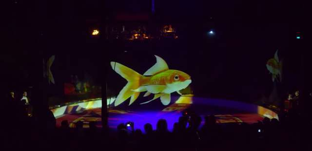 A Circus In Germany Refuses To Use Real Animals, Uses Holograms Instead Tmg-article_tall-1