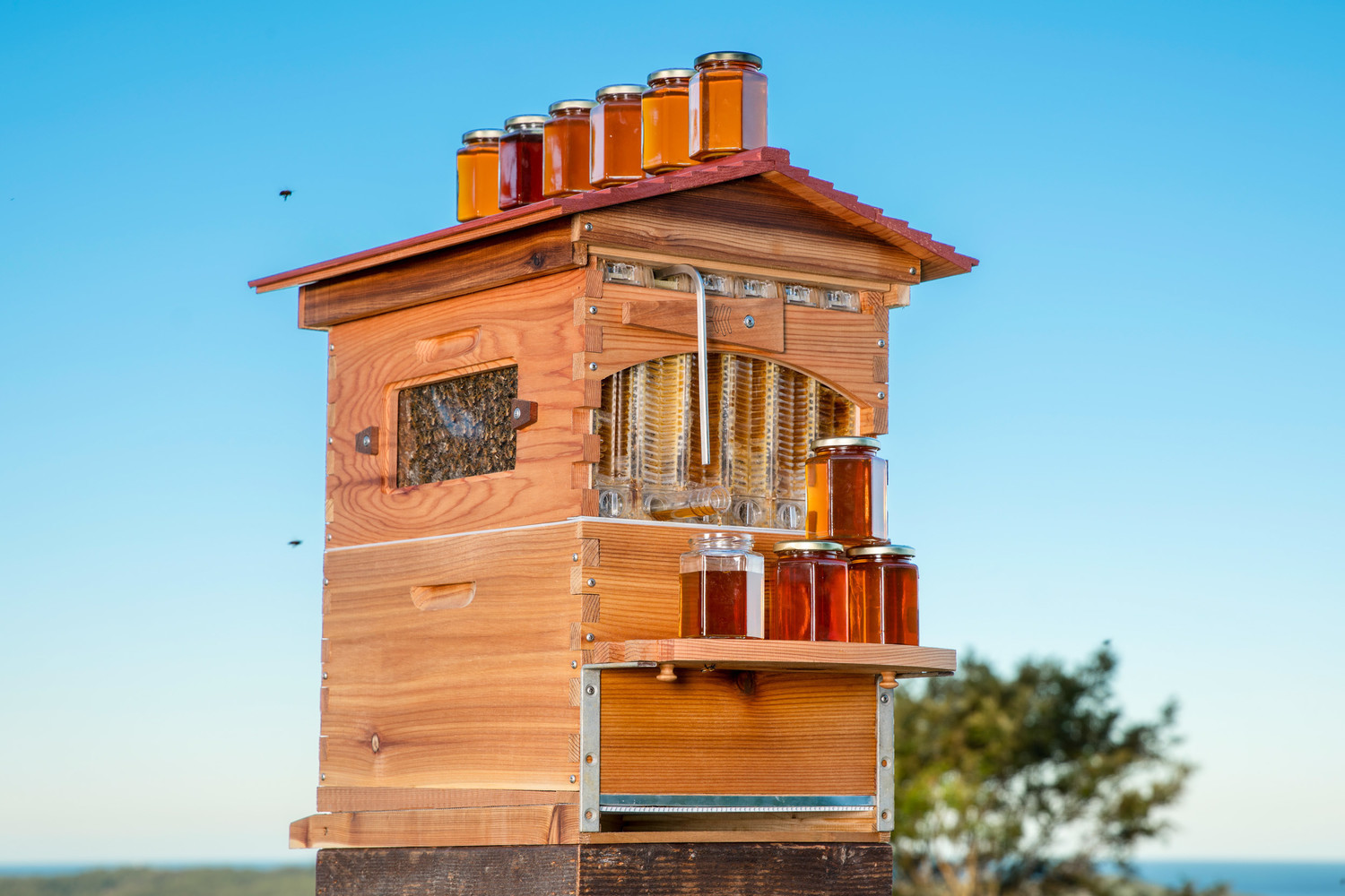 Father-Son Duo Help Create 51,000 New Beehive Colonies With Amazing Invention Gallery_Flow_Hero_DSC05663_v2_2500px_72dpi_no_wm-gallery1029_May31101543
