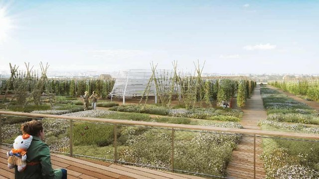 Rooftop Urban Farm in Paris 3 Agripolis Released