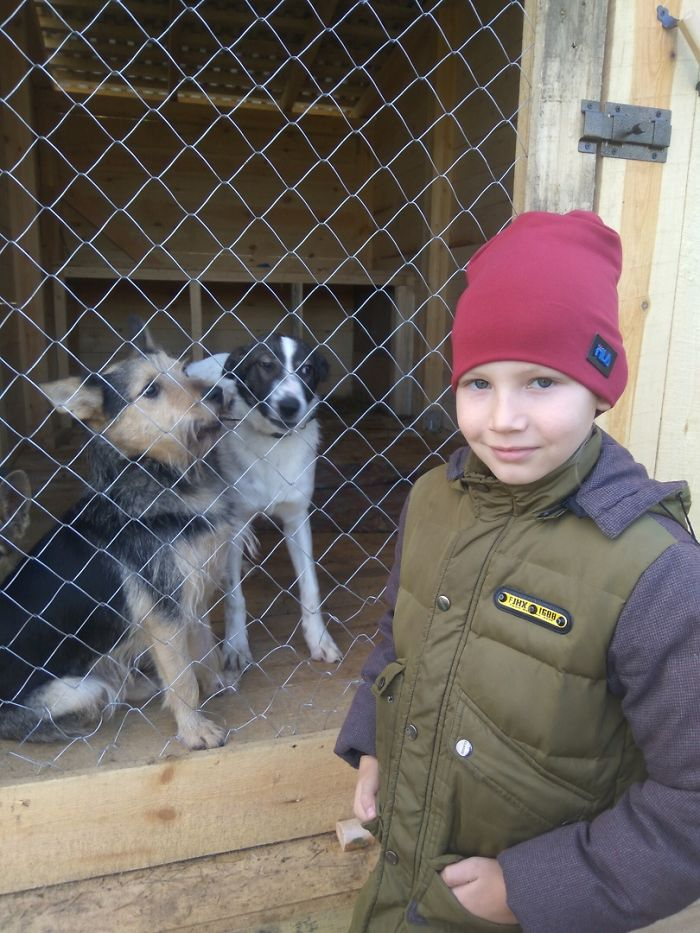 9 year old Russian boy trades his art for abandoned dog food and medicine 5da51e90973a6 700 1