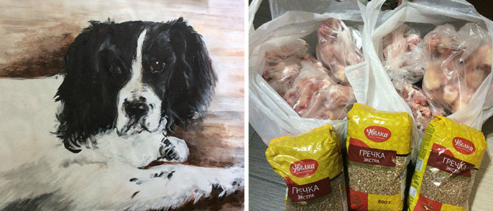9 year old Russian boy trades his art for abandoned dog food and medicine 5da95a0470673 700