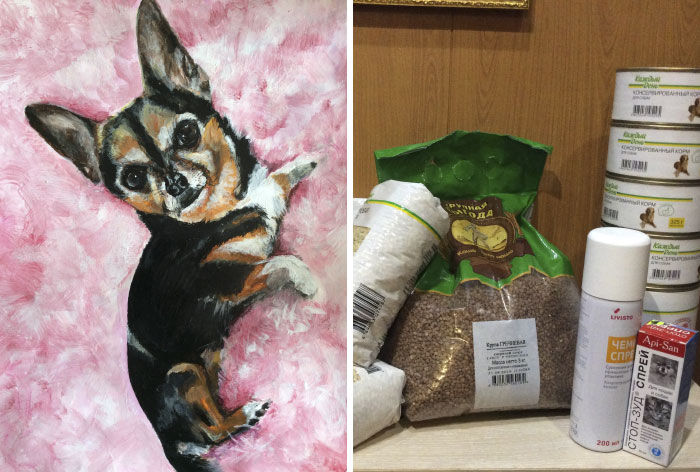 9 year old Russian boy trades his art for abandoned dog food and medicine 5da95f9f50872 700