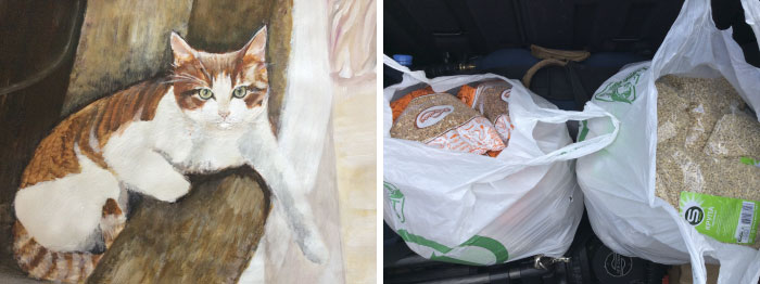9 year old Russian boy trades his art for abandoned dog food and medicine 5da966386400a 700