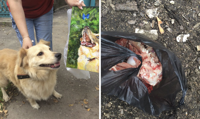 9 year old Russian boy trades his art for abandoned dog food and medicine 5da968575052a 700