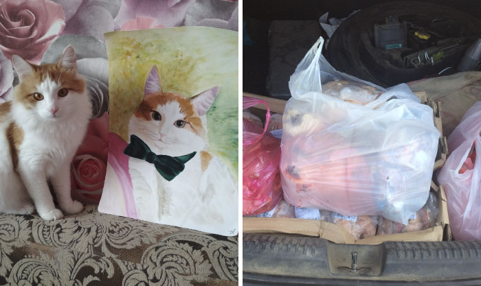 9 year old Russian boy trades his art for abandoned dog food and medicine 5da9698156860 700