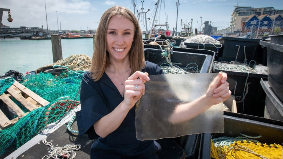 compostable bags made from fish