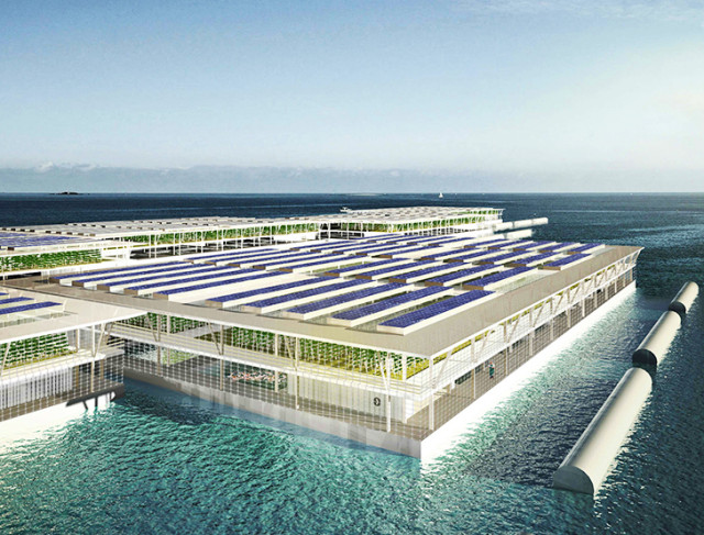 Smart Floating Farms 640x487 1