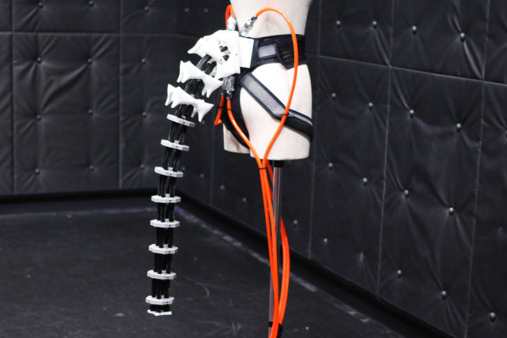 The robotic tail 1