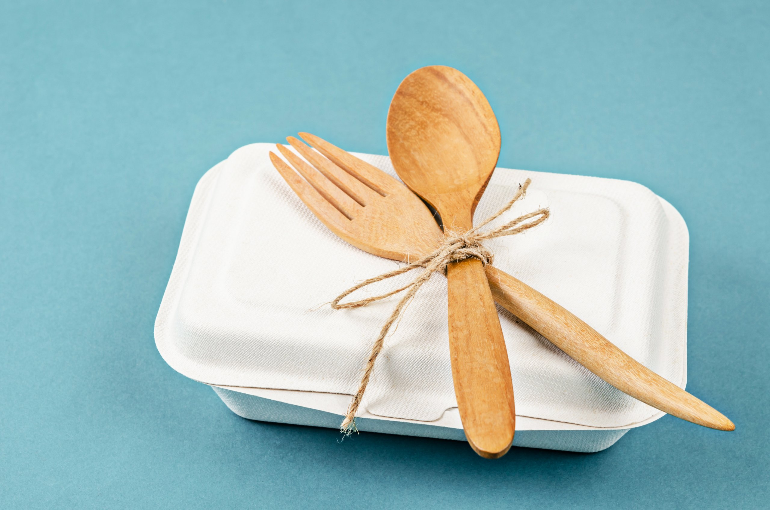 Biodegradable food box with wooden spoon
